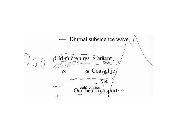 Diurnal subsidence wave
