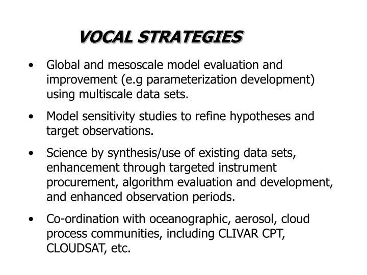 VOCAL STRATEGIES