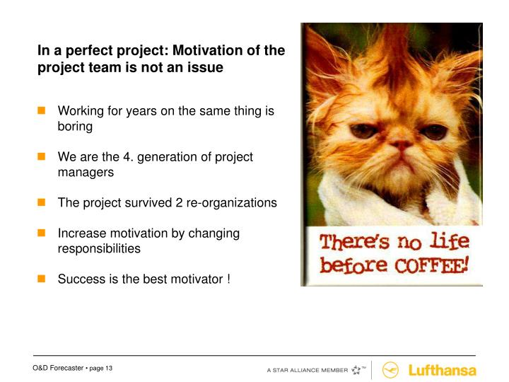 In a perfect project: Motivation of the project team is not an issue