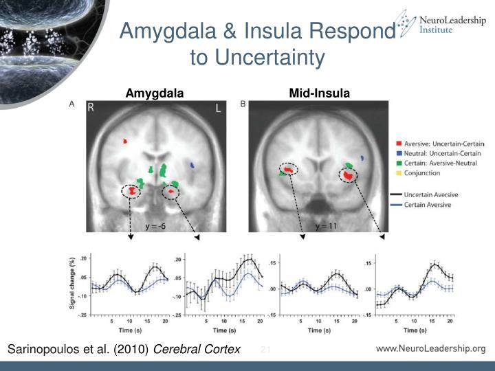Amygdala & Insula Respond to Uncertainty