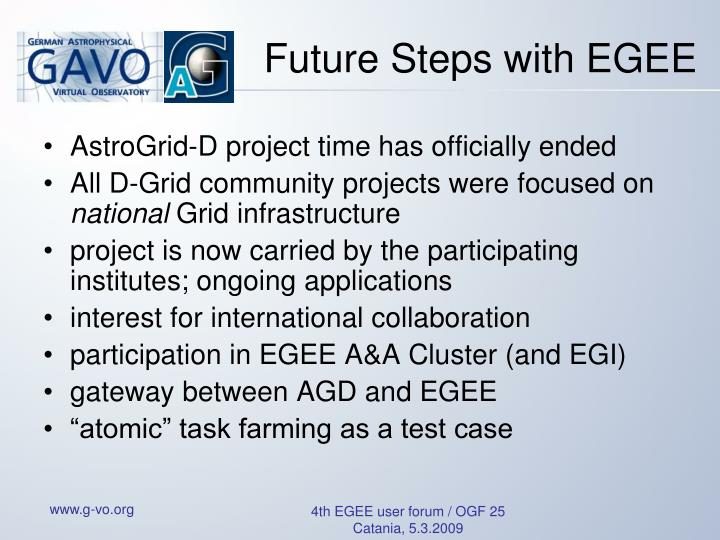 Future Steps with EGEE