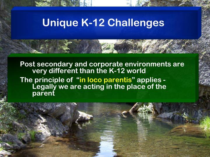 Unique K-12 Challenges