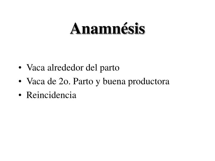 Anamnésis