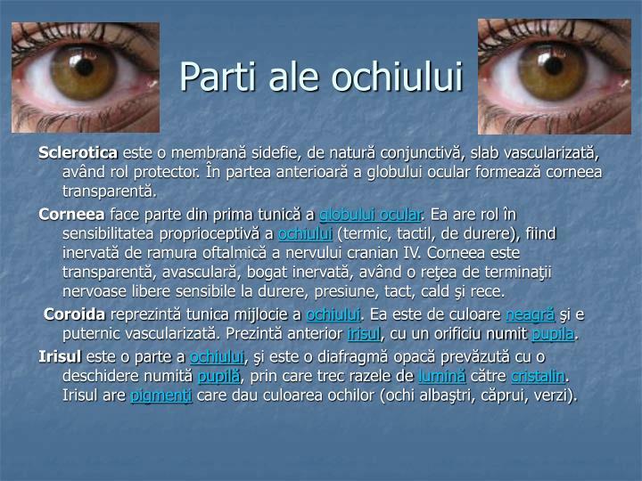 Parti ale ochiului