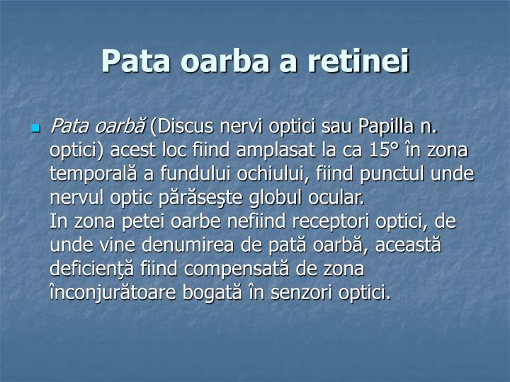 Pata oarba a retinei