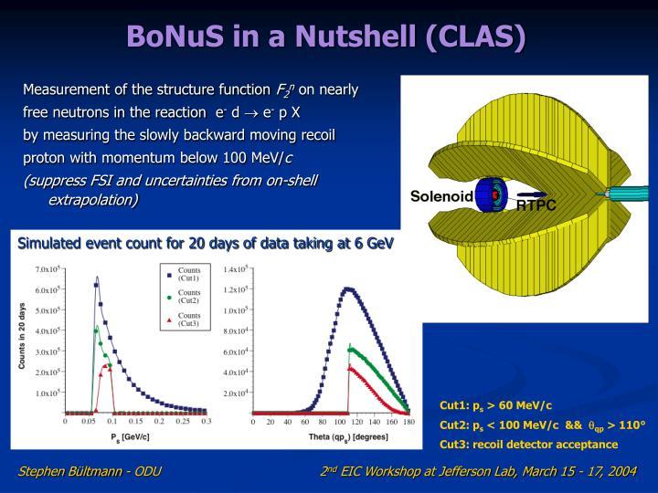 BoNuS in a Nutshell (CLAS)