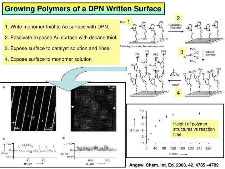 Growing Polymers of a DPN Written Surface