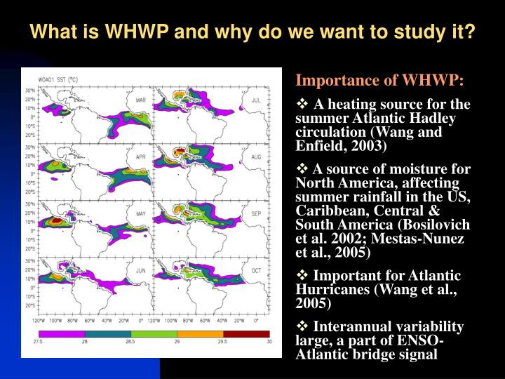 What is WHWP and why do we want to study it?