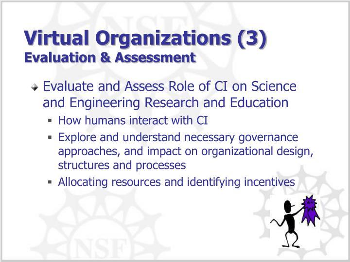 Virtual Organizations (3)