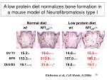 a low protein diet normalizes bone formation in a mouse model of neurofibromatosis type i