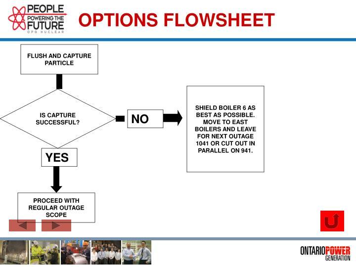 OPTIONS FLOWSHEET