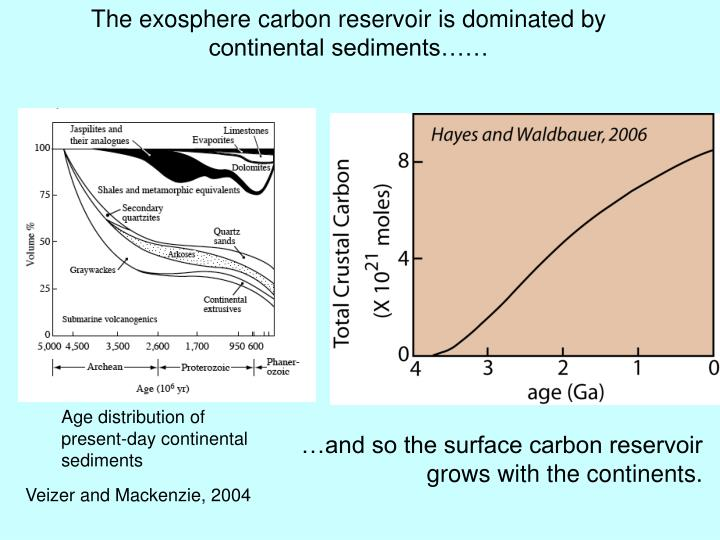 The exosphere carbon reservoir is dominated by