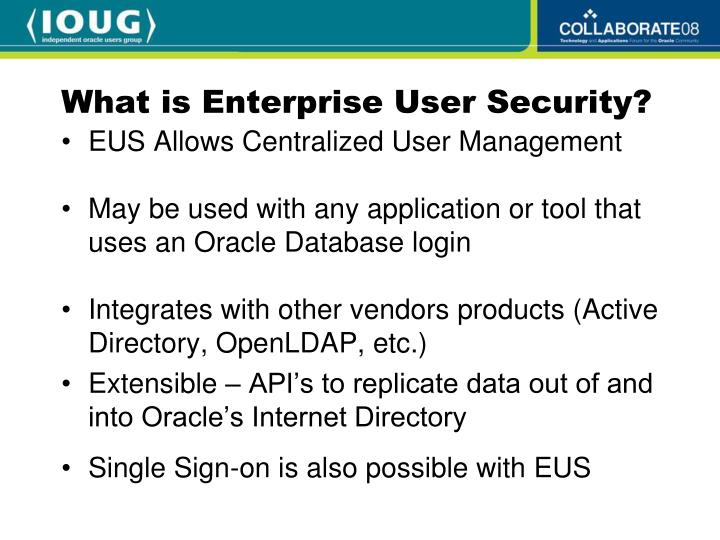 What is Enterprise User Security?