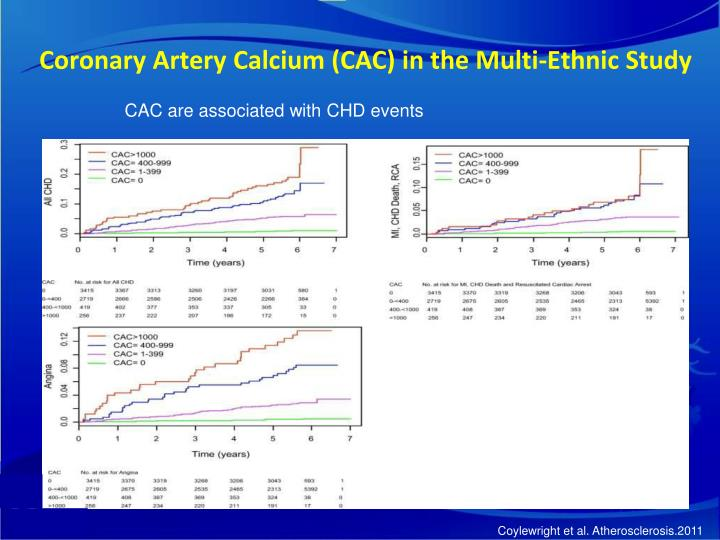 Coronary Artery Calcium (CAC) in the Multi-Ethnic Study