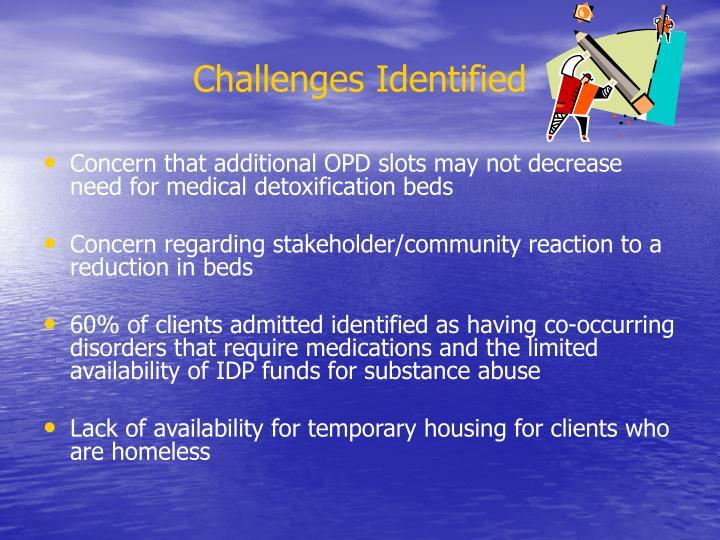 Challenges Identified