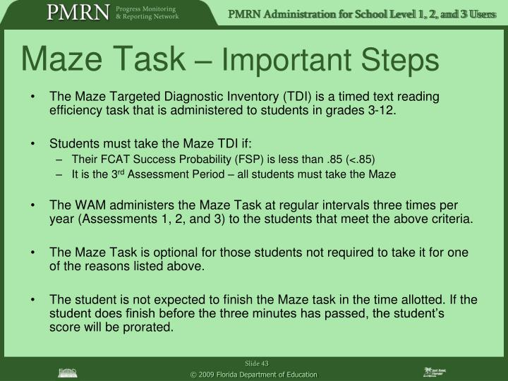 Maze Task