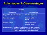 advantages disadvantages1