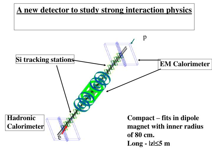 A new detector to study strong interaction physics