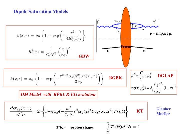 Dipole Saturation Models