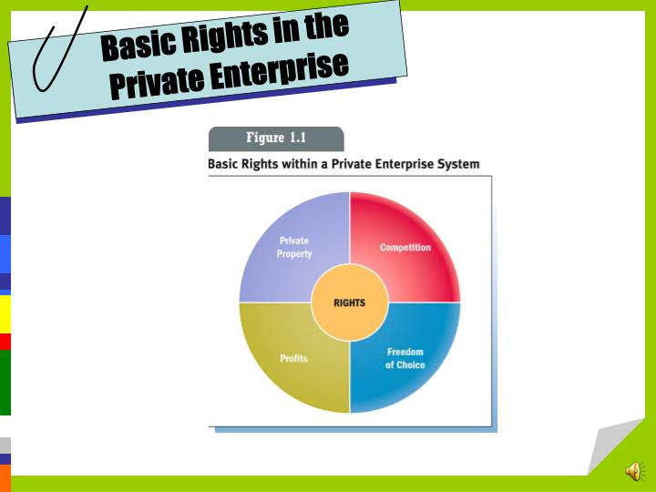 Basic Rights in the Private Enterprise