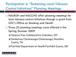 participation in sustaining local tobacco control initiatives planning meetings