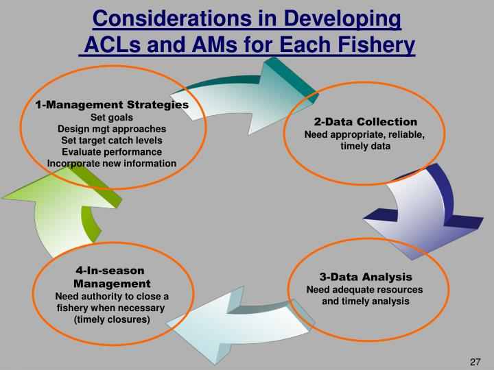 Considerations in Developing
