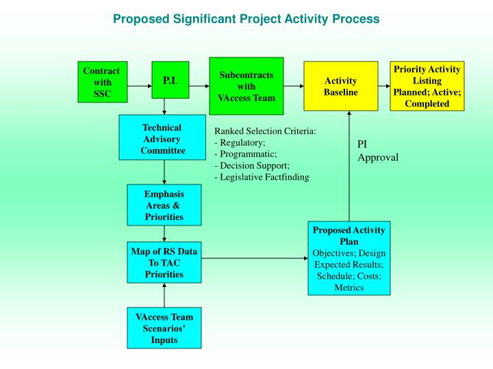 Proposed Significant Project Activity Process