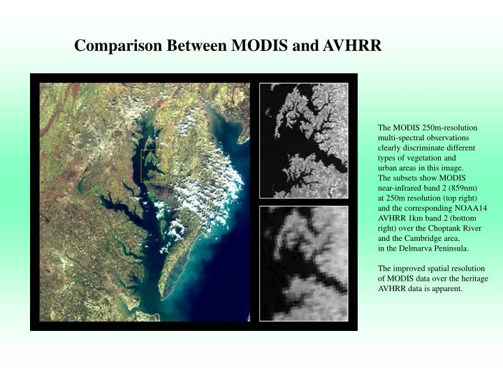 Comparison Between MODIS and AVHRR