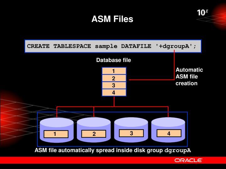 ASM Files