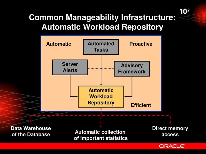 Common Manageability Infrastructure: Automatic Workload Repository