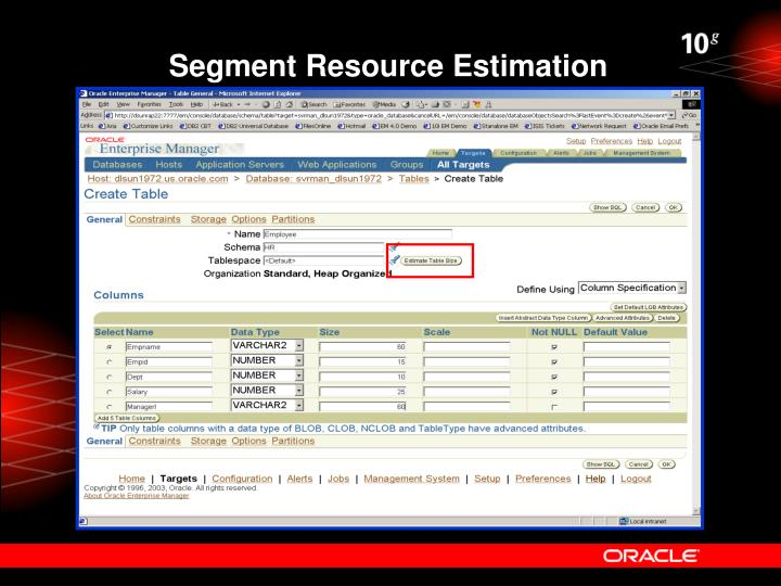 Segment Resource Estimation