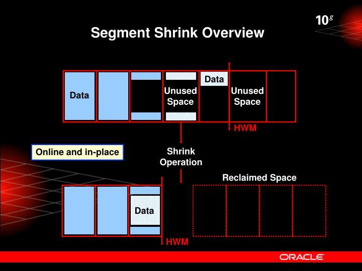 Segment Shrink Overview