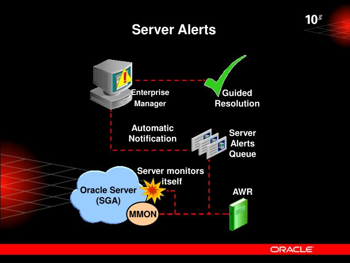 Oracle Server