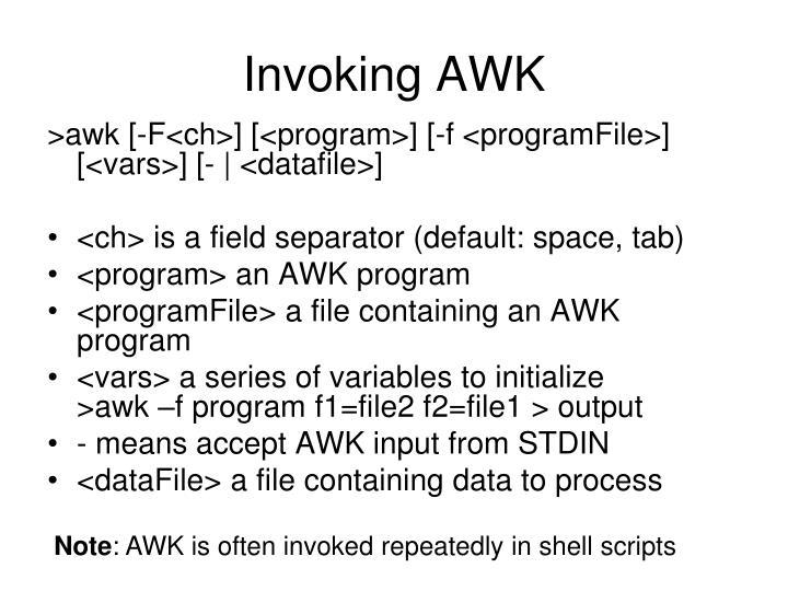 Invoking AWK