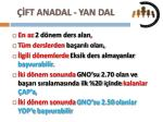 ft anadal yan dal