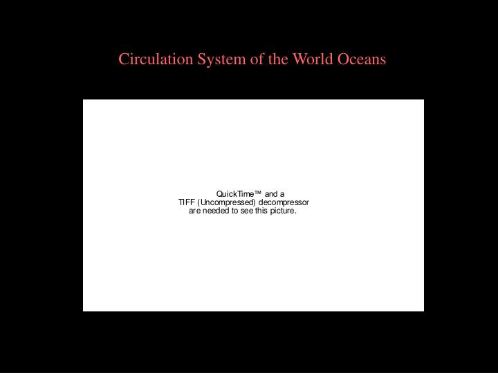 Circulation System of the World Oceans