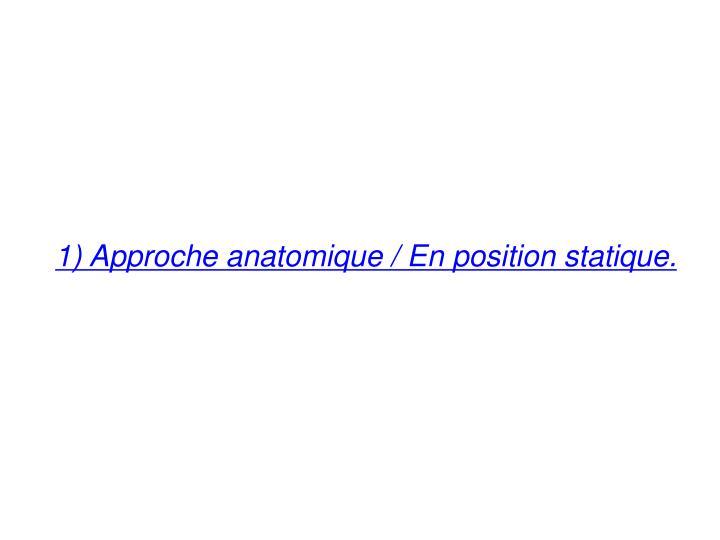 1) Approche anatomique / En position statique.