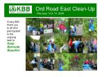 ord road east clean up february 14 15 20095