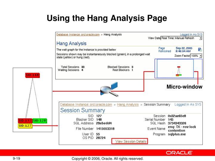 Using the Hang Analysis Page