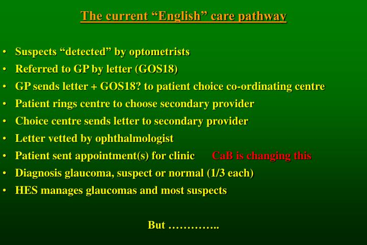 "The current ""English"" care pathway"