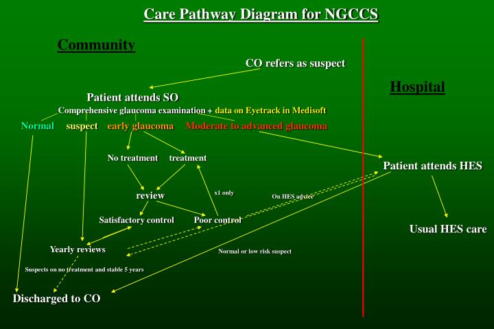 Care Pathway Diagram for NGCCS