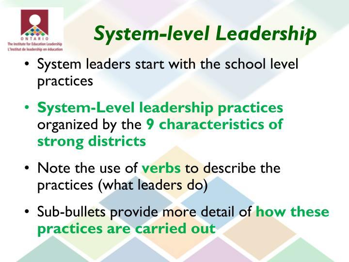 System-level Leadership