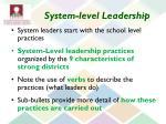 system level leadership