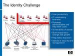 the identity challenge
