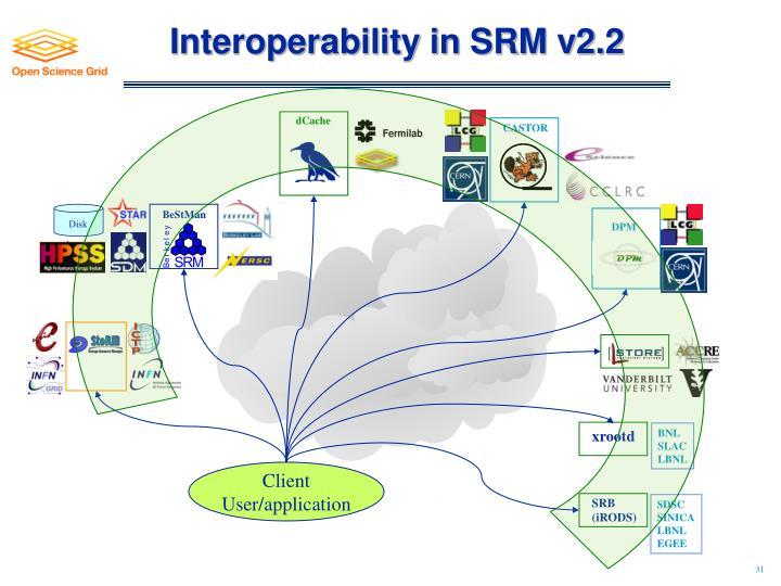 Interoperability in SRM v2.2