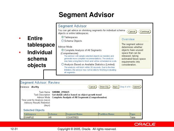 Segment Advisor
