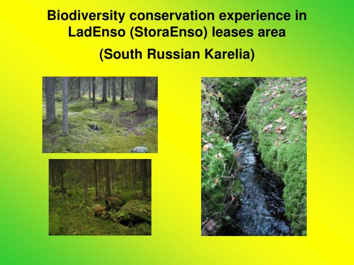 Biodiversity conservation experience in LadEnso (StoraEnso) leases area