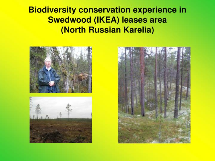 Biodiversity conservation experience in Swedwood (IKEA) leases area