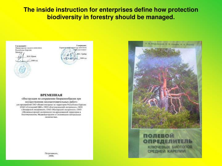 The inside instruction for enterprises define how protection biodiversity in forestry should be managed.