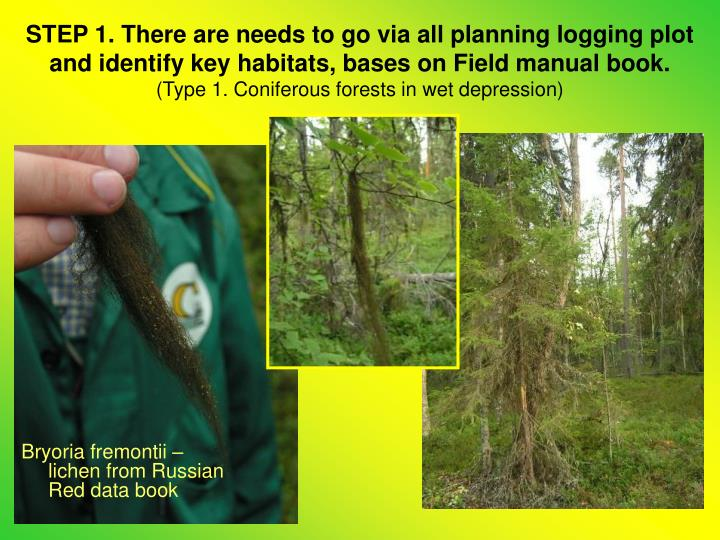 STEP 1. There are needs to go via all planning logging plot and identify key habitats, bases on Field manual book.